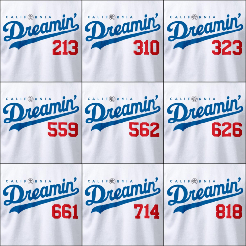 tshirt ProClub Dreamin white __all area codes